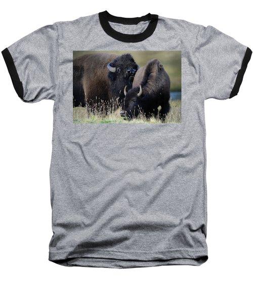Bison Grasses Baseball T-Shirt