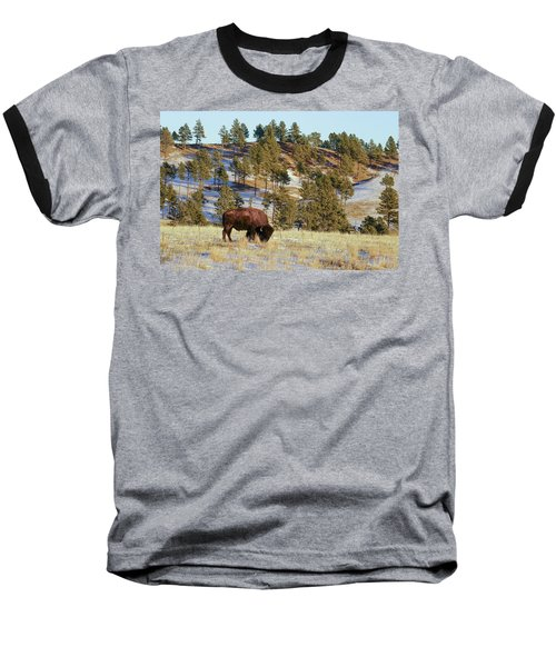 Bison In Custer State Park Baseball T-Shirt