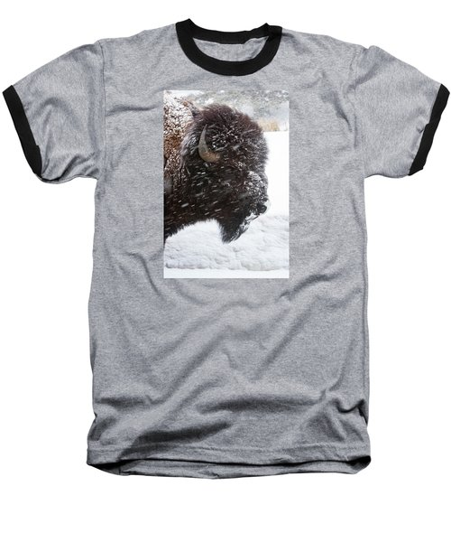 Bison In Snow Baseball T-Shirt