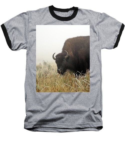 Bison In The Frosty Morning Baseball T-Shirt