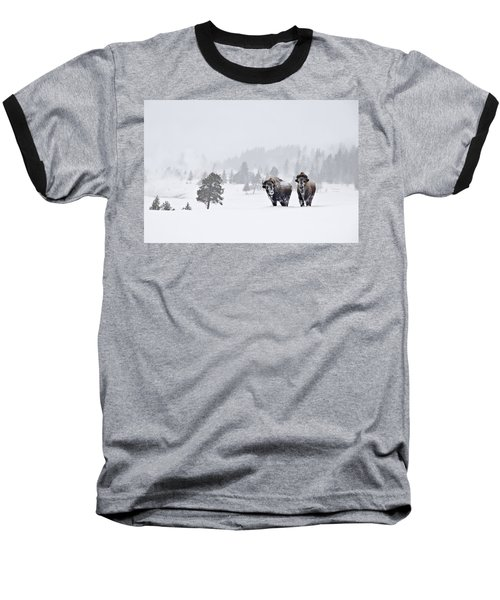 Bison In The Snow Baseball T-Shirt