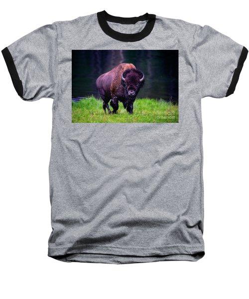 Bison Of Yellowstone Baseball T-Shirt
