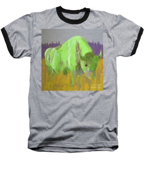 Bison On The American Plains Baseball T-Shirt by Donald J Ryker III