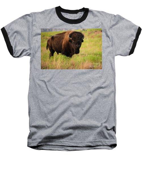 Bison Prime Baseball T-Shirt