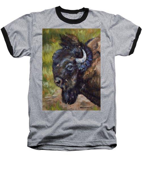 Bison Study 5 Baseball T-Shirt