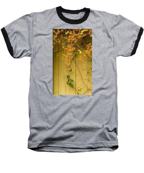 Bittersweet Vine Baseball T-Shirt