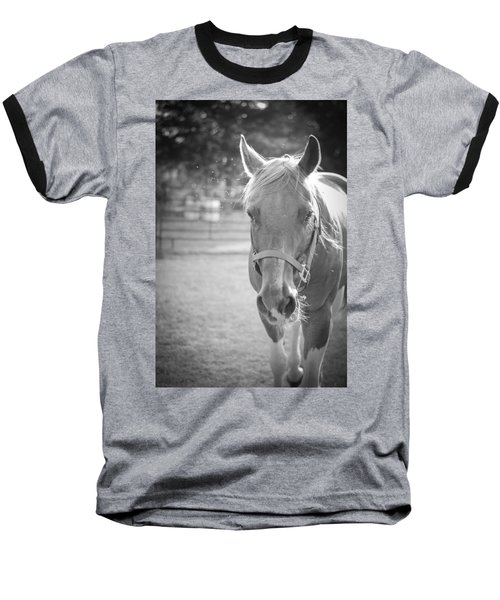 Black And White Portrait Of A Horse In The Sun Baseball T-Shirt