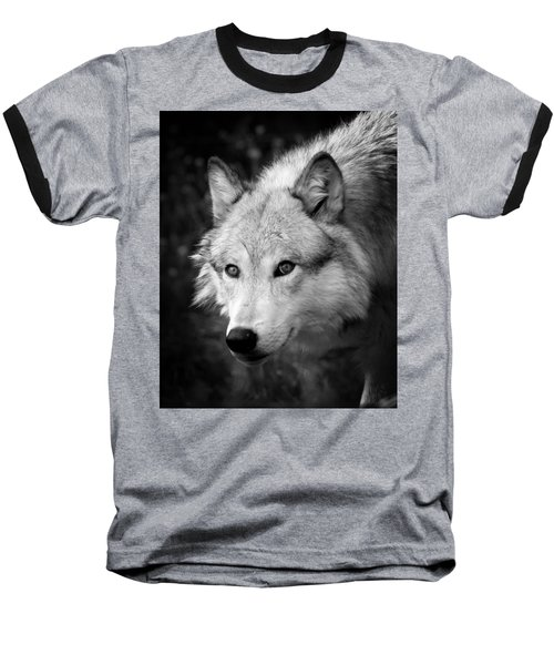 Black And White Wolf Baseball T-Shirt by Steve McKinzie