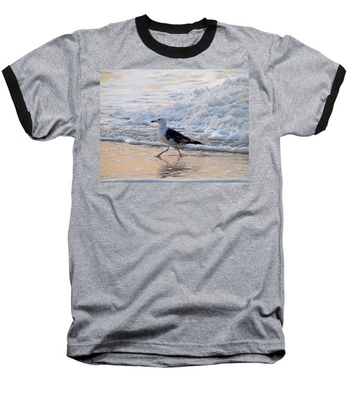 Black-backed Gull Baseball T-Shirt