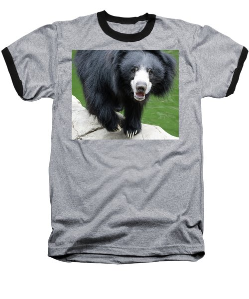Sun Bear Baseball T-Shirt
