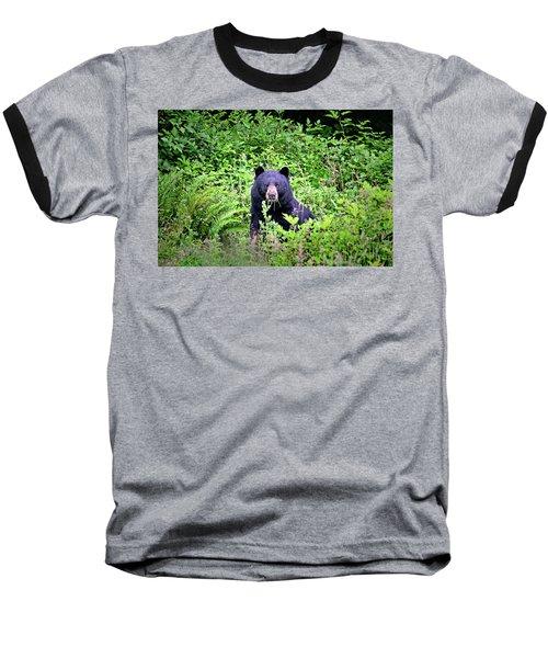 Black Bear Eating His Veggies Baseball T-Shirt