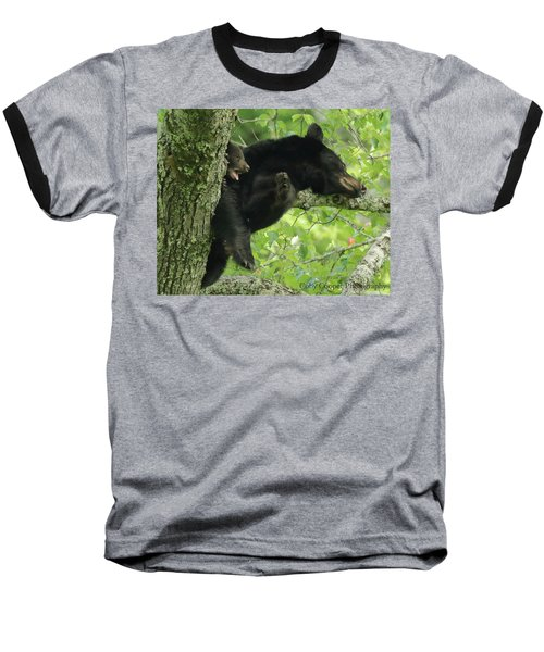 Black Bear In Tree With Cub Baseball T-Shirt