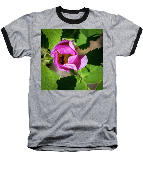 Baseball T-Shirt featuring the photograph Black Bee Collecting Pollen by Darcy Michaelchuk