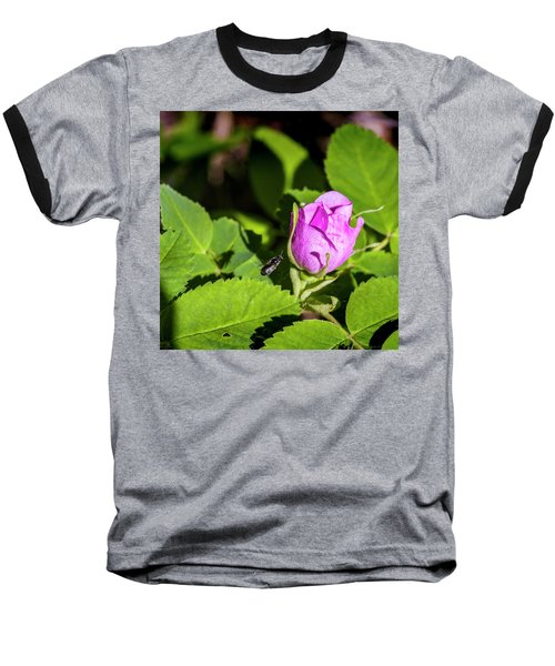 Baseball T-Shirt featuring the photograph Black Bee On Approach by Darcy Michaelchuk