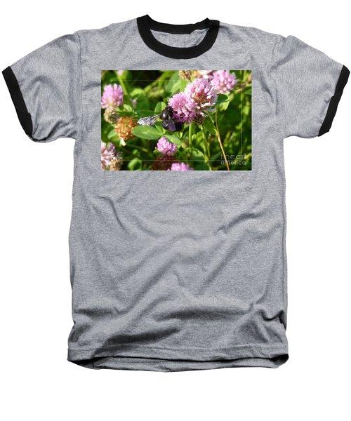 Black Bee On Small Purple Flower Baseball T-Shirt by Jean Bernard Roussilhe