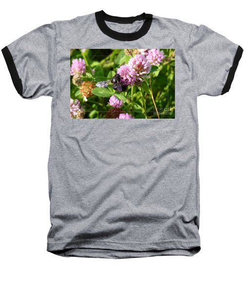 Black Bee On Small Purple Flower Baseball T-Shirt