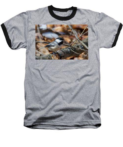 Black-capped Chickadee 0571 Baseball T-Shirt by Michael Peychich