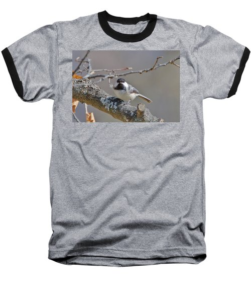 Baseball T-Shirt featuring the photograph Black Capped Chickadee 1109 by Michael Peychich