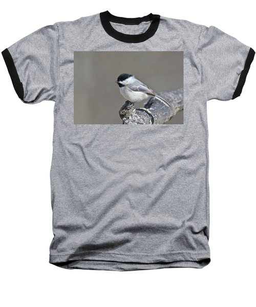 Baseball T-Shirt featuring the photograph Black Capped Chickadee 1128 by Michael Peychich