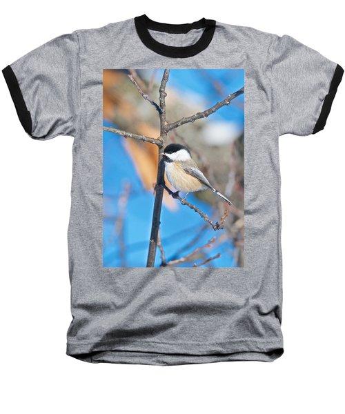 Black Capped Chickadee 1140 Baseball T-Shirt by Michael Peychich