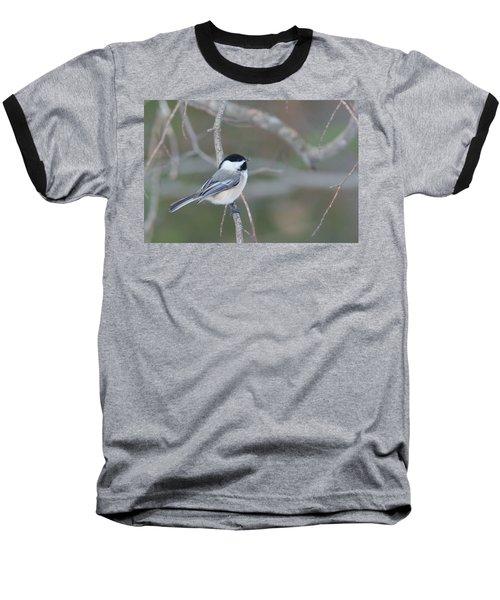 Black Capped Chickadee 1379 Baseball T-Shirt by Michael Peychich