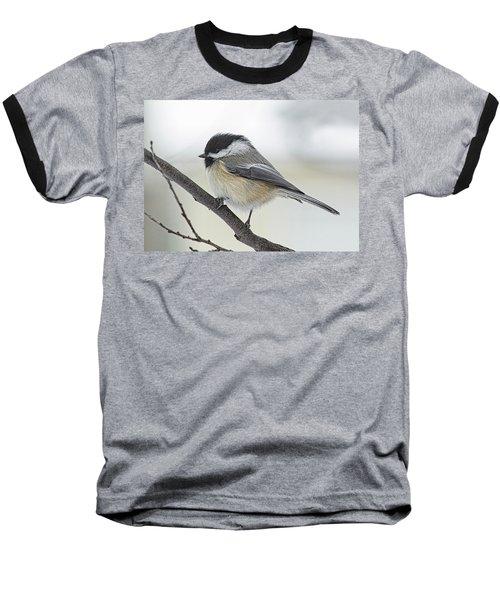 Black-capped Chickadee Baseball T-Shirt