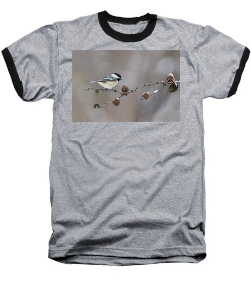 Baseball T-Shirt featuring the photograph Black-capped Chickadee by Mircea Costina Photography