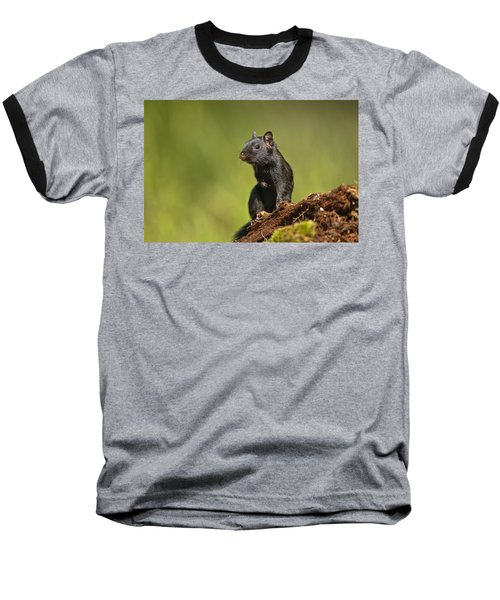 Black Chipmunk On Log Baseball T-Shirt