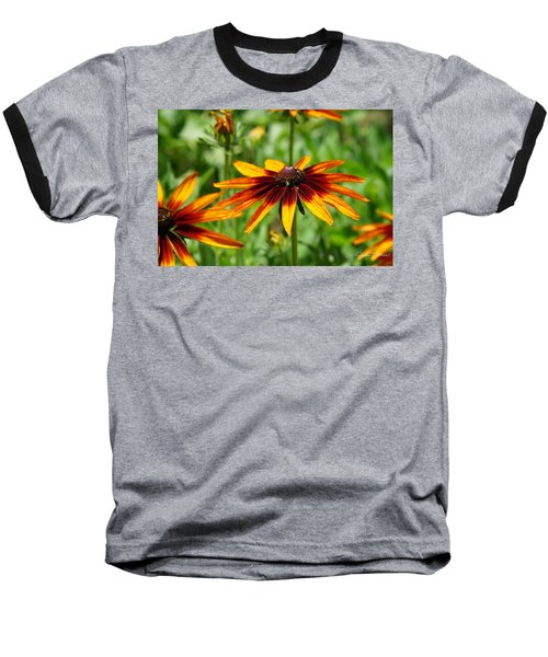 Black-eyed Susans Baseball T-Shirt