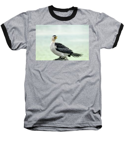 black faced Cormorant 02 Baseball T-Shirt by Kevin Chippindall