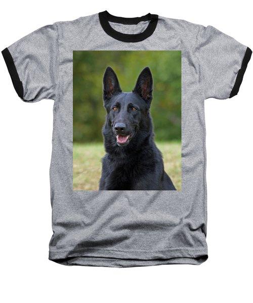 Black German Shepherd Dog Baseball T-Shirt by Sandy Keeton