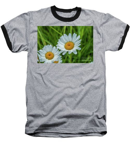 Black-headed Daisy's Baseball T-Shirt