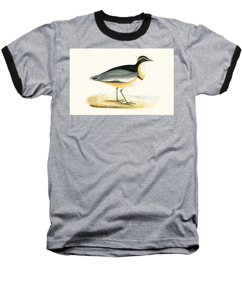 Black Headed Plover Baseball T-Shirt by English School