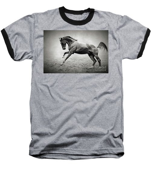 Black Horse In Dust Baseball T-Shirt