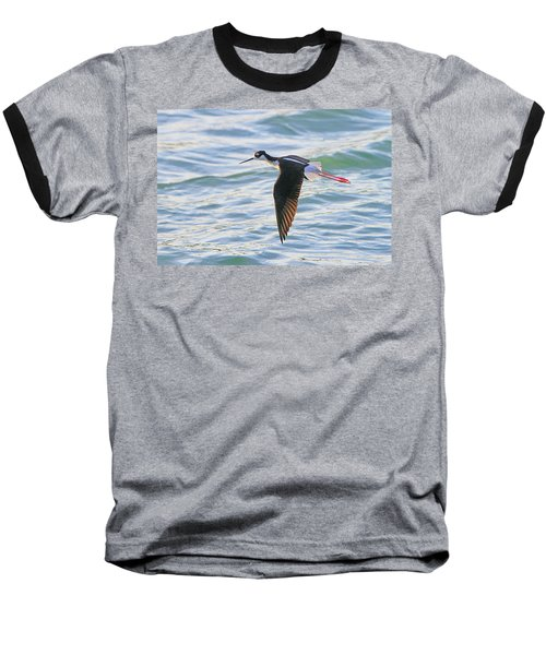 Black-necked Stilt 8 Baseball T-Shirt