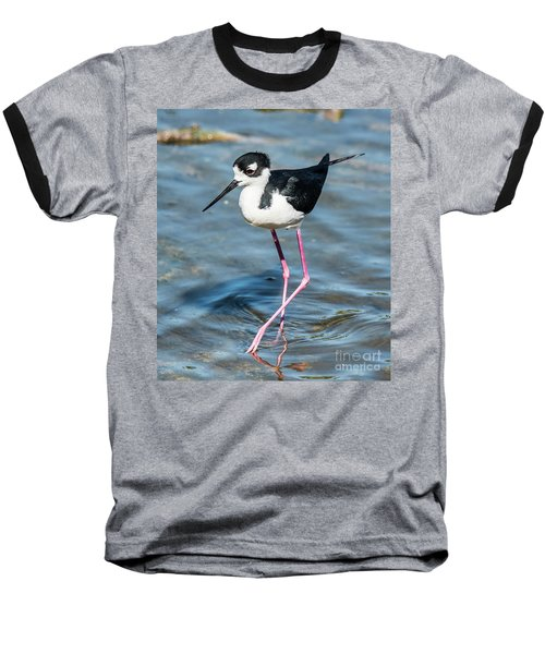 Black-necked Stilt Shows Legs Baseball T-Shirt