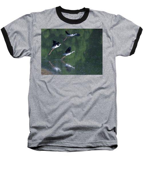 Black-necked Stilts 4302-080917-2cr Baseball T-Shirt