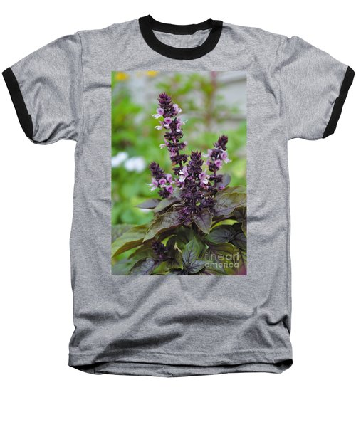 Black Opal Basil Flower Baseball T-Shirt