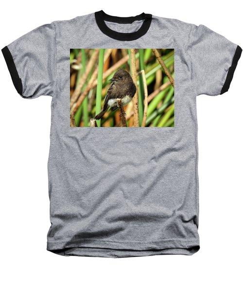 Black Phoebe Close Up Baseball T-Shirt