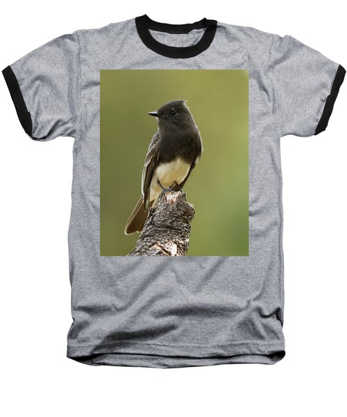Baseball T-Shirt featuring the photograph Black Phoebe by Doug Herr