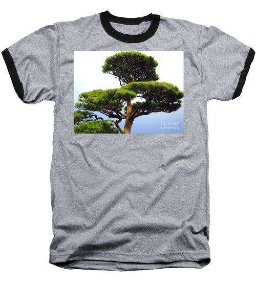 Black Pine Japan Baseball T-Shirt by Susan Lafleur