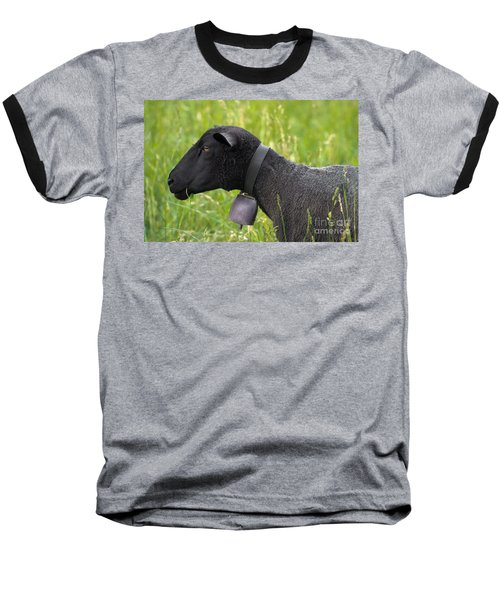 Black Sheep Baseball T-Shirt
