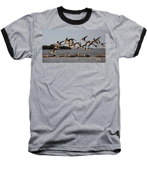 Black Skimmers In Flight Baseball T-Shirt