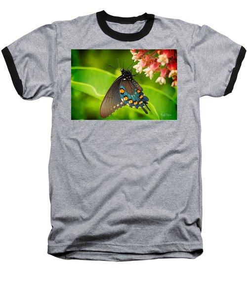 Black Swallowtail #1 Baseball T-Shirt