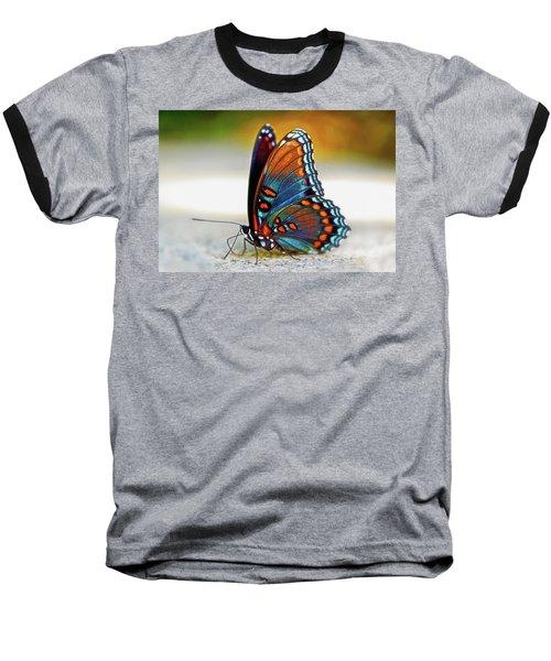 Black Swallowtail Butterfly 003 Baseball T-Shirt