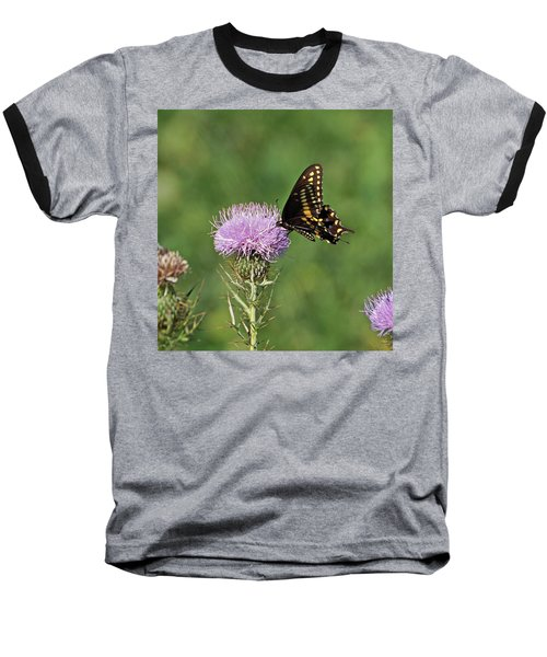 Baseball T-Shirt featuring the photograph Black Swallowtail Butterfly by Sandy Keeton