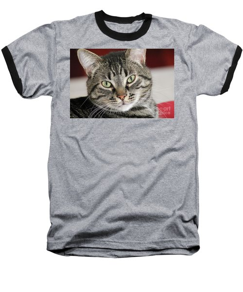 Black Tabby Baseball T-Shirt