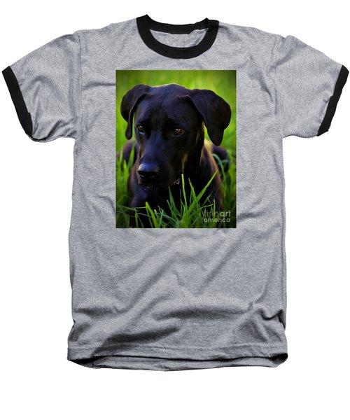 Black Velvet Baseball T-Shirt by Clare Bevan