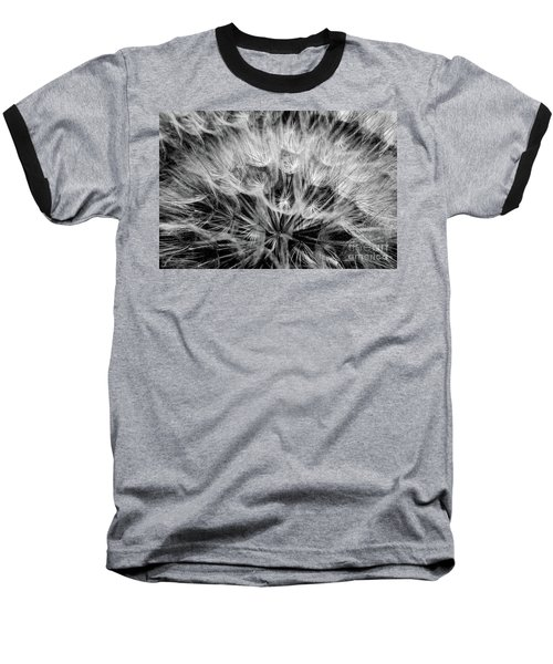 Black Widow Dandelion Baseball T-Shirt by Iris Greenwell