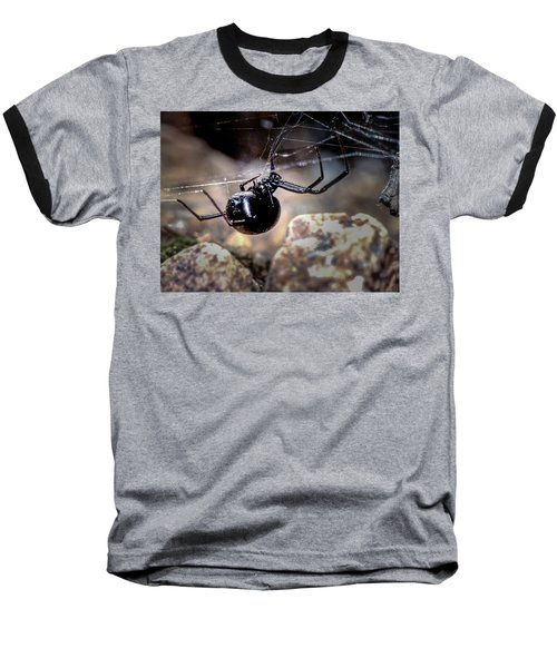 Black Widow Spider Baseball T-Shirt by John Brink